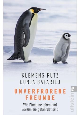 Buch »Unverfrorene Freunde / Klemens Pütz, Dunja Batarilo« kaufen