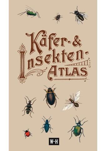 Buch »Käfer- & Insekten-Atlas / Ted Konakowitsch« kaufen