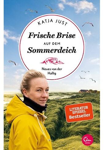 Buch »Frische Brise auf dem Sommerdeich / Katja Just« kaufen