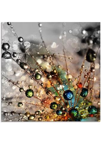 Artland Glasbild »Farbenfrohe Natur«, Blumen, (1 St.) kaufen