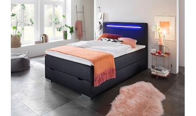 meise.möbel Boxspringbett, mit LED-Beleuchtung, Bettkasten und Topper kaufen
