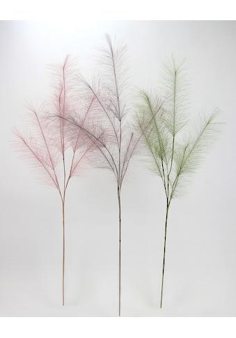I.GE.A. Kunstpflanze »Federzweig«, 3er Set kaufen