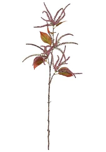 Creativ deco Kunstzweig »Amaranthus« kaufen