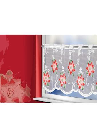 WILLKOMMEN ZUHAUSE by ALBANI GROUP Panneaux »Weihnachtsstern«, Jacquard-Panneaux, handcoloriert kaufen