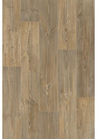 Andiamo Vinylboden »Lech«, Breite 400 cm, Meterware, kiefernfarben kaufen