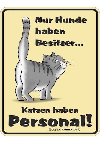 Rahmenlos Blechschild mit lustigem Katzen - Motiv kaufen