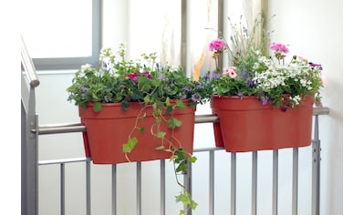 KHW Pflanztopf »Flowerclip XL«, 2 Stk., terracotta kaufen