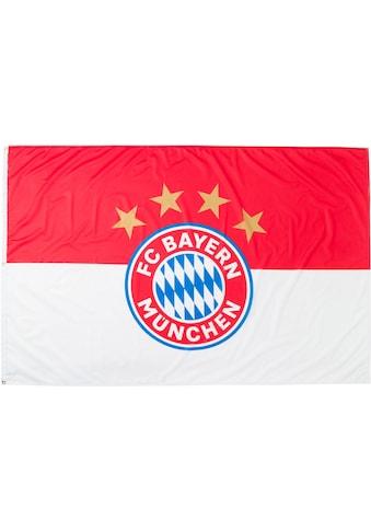 FC Bayern Fahne »Hissfahne Logo FCB« kaufen