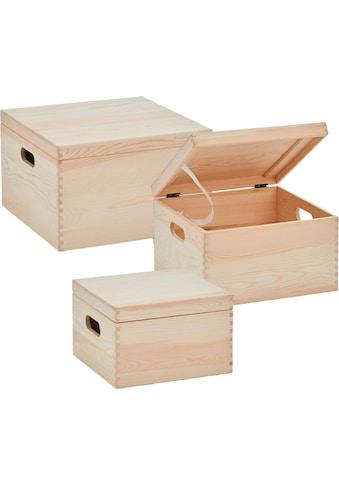 Zeller Present Aufbewahrungsbox (Set, 3 Stück) kaufen