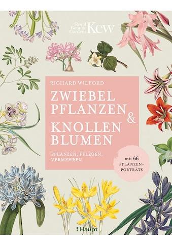 Buch »Zwiebelpflanzen & Knollenblumen / Richard Wilford, Anne Taubert« kaufen