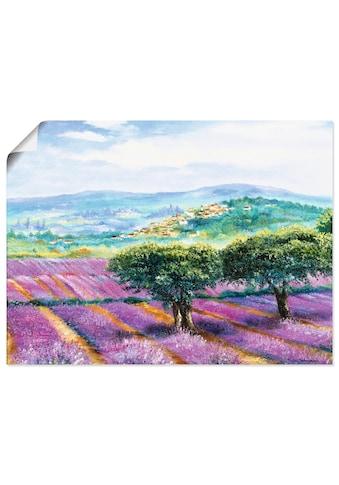 Artland Wandbild »Lavendelfeld«, Blumenwiese, (1 St.), in vielen Größen & Produktarten... kaufen
