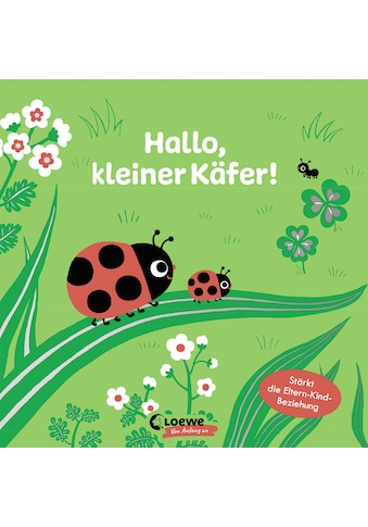 Buch »Hallo, kleiner Käfer! / Loewe Von Anfang An, Emiri Hayashi, Anna Taube« kaufen