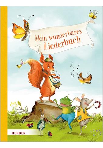 Buch »Mein wunderbares Liederbuch / Sylvia Müller, Katja Jäger« kaufen