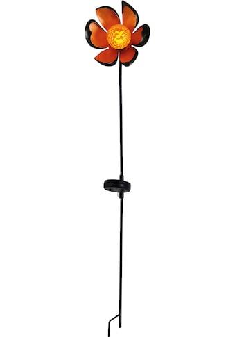 näve,LED Gartenleuchte»Blume«, kaufen