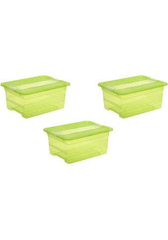 keeeper Aufbewahrungsbox »cornelia« (Set, 3 Stück) kaufen