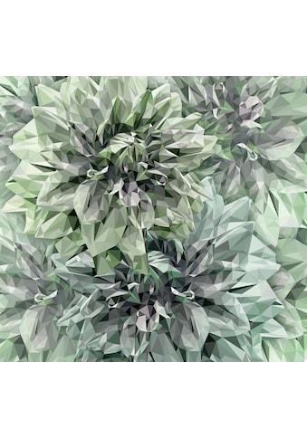 Komar Fototapete »Vliestapete Emerald Flowers«, bedruckt-geblümt-floral-realistisch,... kaufen