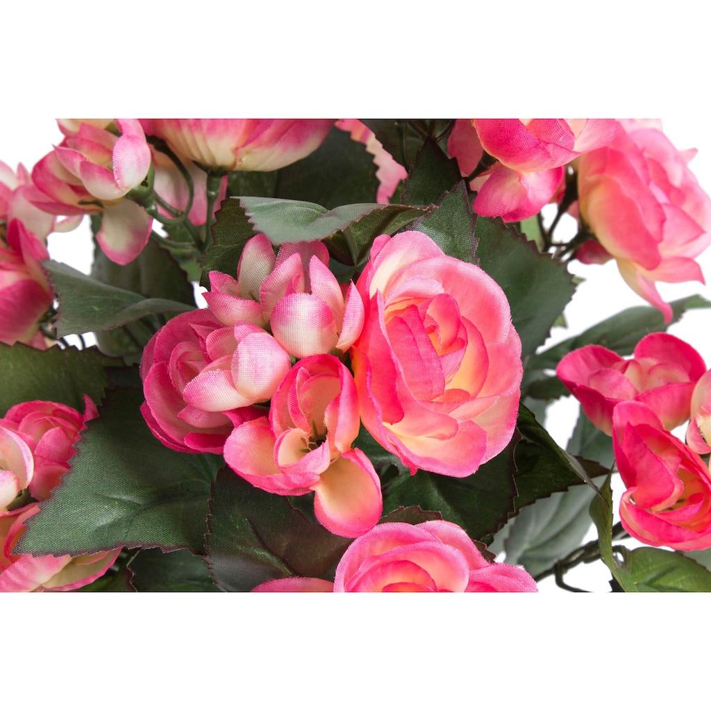 Botanic-Haus Kunstblume »Begonie im Topf«