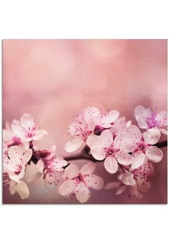 Artland Glasbild »Kirschblüten«, Blumen, (1 St.) kaufen
