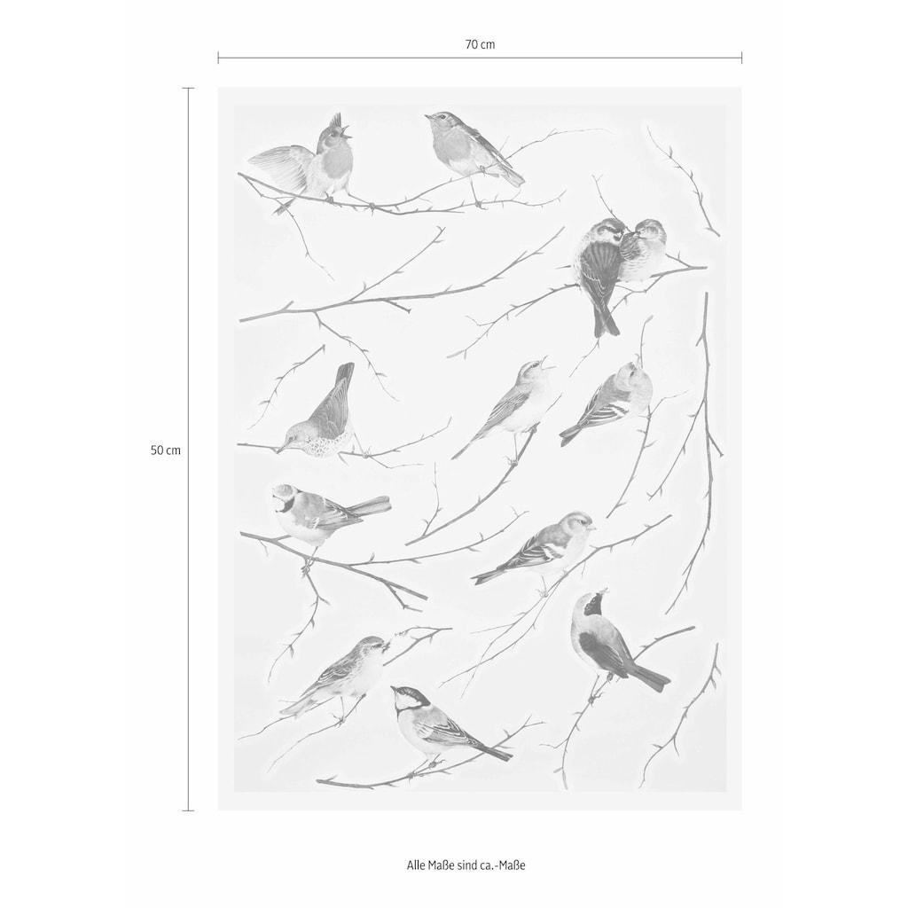 Komar Wandtattoo »Vögel«, selbstklebend