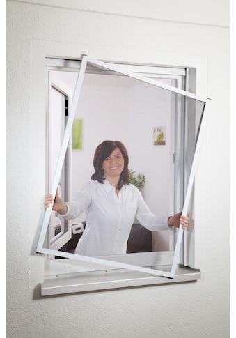 hecht international Insektenschutz-Fenster »MASTER SLIM«, weiß/anthrazit, BxH: 100x120 cm kaufen