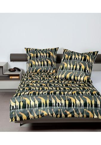 Janine Wendebettwäsche »modern art 42059«, mit Giraffen kaufen