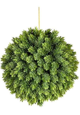 Creativ green Künstliche Zimmerpflanze »Hopfenkugel« kaufen