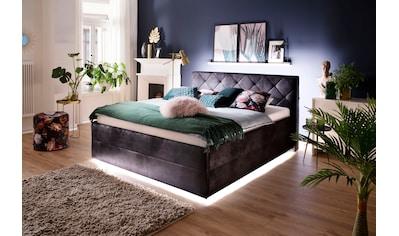 meise.möbel Polsterbett, mit LED-Beleuchtung kaufen