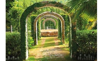 Papermoon Fototapete »Pergola Garden« kaufen
