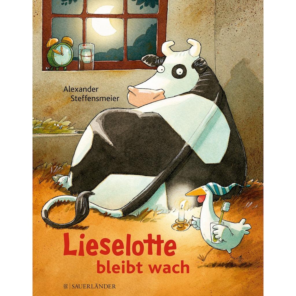 Buch »Lieselotte bleibt wach / Alexander Steffensmeier, Alexander Steffensmeier«