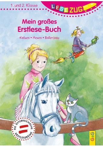 Buch »LESEZUG/1.-2. Klasse: Mein großes Erstlese-Buch - Katzen, Hexen, Ballerinas /... kaufen
