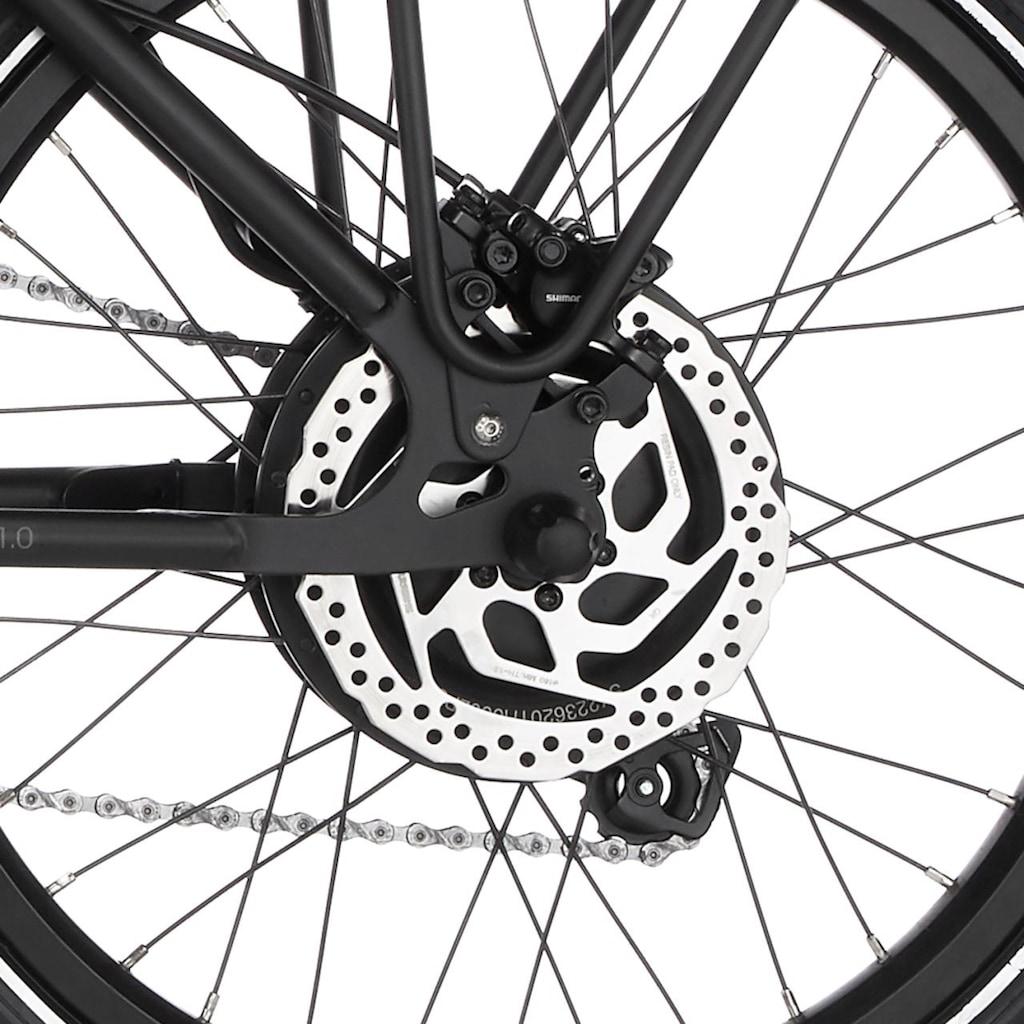 FISCHER Fahrräder E-Bike, 9 Gang, Shimano, Sora, Heckmotor 250 W