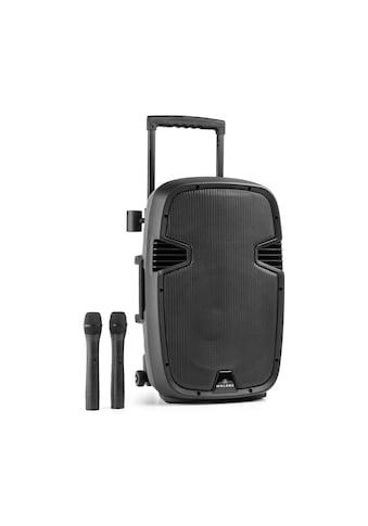 Malone Mobile Aktiv PA Box Lautsprecher 700W Bluetooth USB 2x Mikrofon »Bushfunk 30« kaufen
