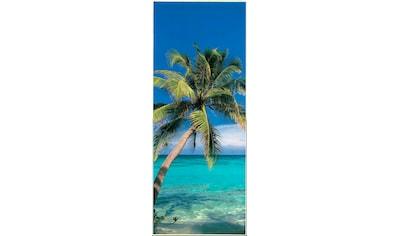 PAPERMOON Fototapete »Palm Tree  -  Türtapete«, BlueBack, 2 Bahnen, 90 x 200 cm kaufen