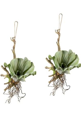 Creativ green Kunstranke, 2er Set kaufen
