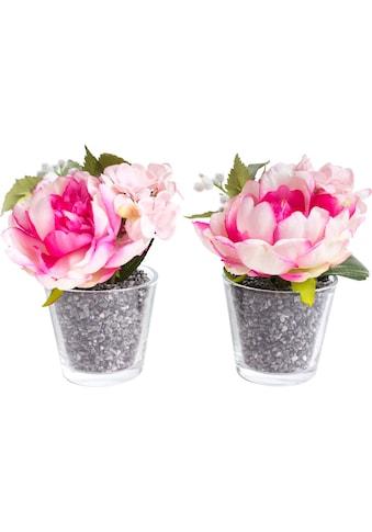 Botanic-Haus Künstliche Zimmerpflanze »Pfingstrosen-Hortensien-Arrangement« kaufen