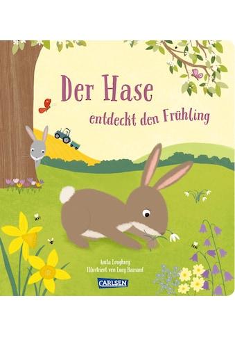 Buch »Der Hase entdeckt den Frühling / Lucy Barnard, Anita Loughrey, Julia Hofmann« kaufen