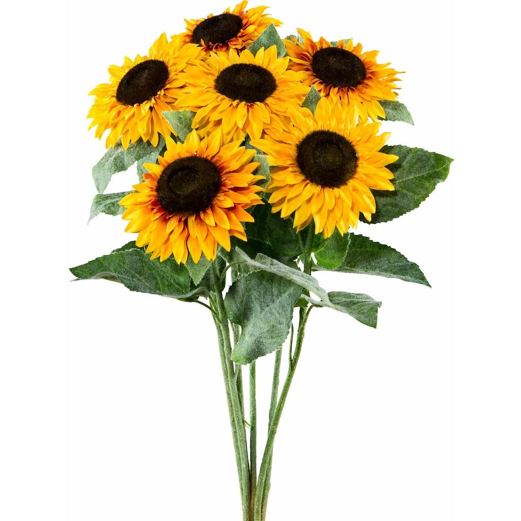 Creativ green Kunstblume »Sonnenblume«