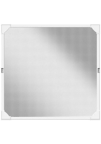SCHELLENBERG Insektenschutz-Fenster »Magnet«, BxH: 100x120 cm, weiß kaufen