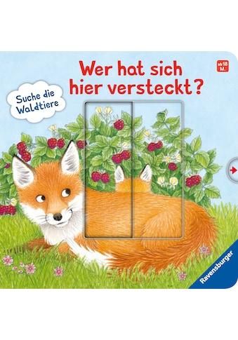 Buch »Wer hat sich hier versteckt? Suche die Waldtiere / Sandra Grimm, Barbara... kaufen