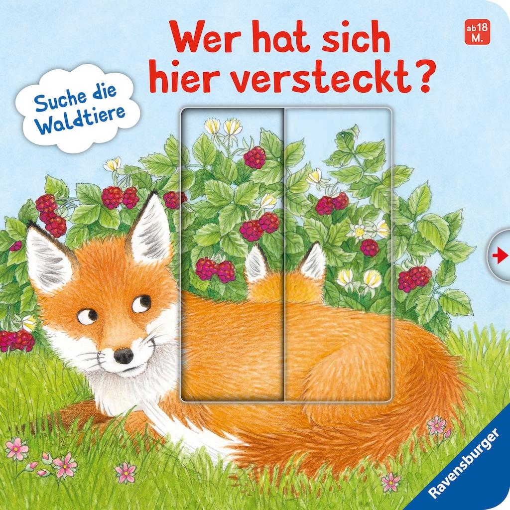 Buch »Wer hat sich hier versteckt? Suche die Waldtiere / Sandra Grimm, Barbara Jelenkovich«