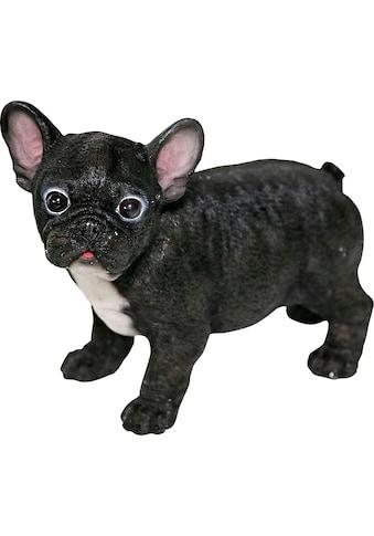 Home affaire Dekofigur »franz. Bulldoge« kaufen