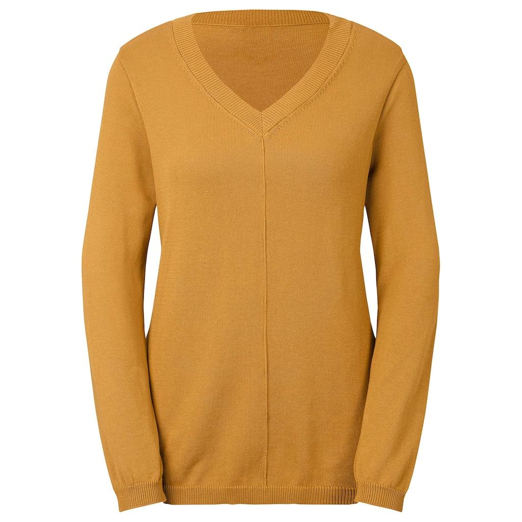 Inspirationen V-Ausschnitt-Pullover »Pullover«