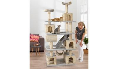 ABUKI Kratzbaum »Fluffy«, hoch, BxTxH: 81x61x200 cm kaufen