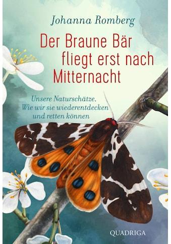 Buch »Der Braune Bär fliegt erst nach Mitternacht / Johanna Romberg« kaufen