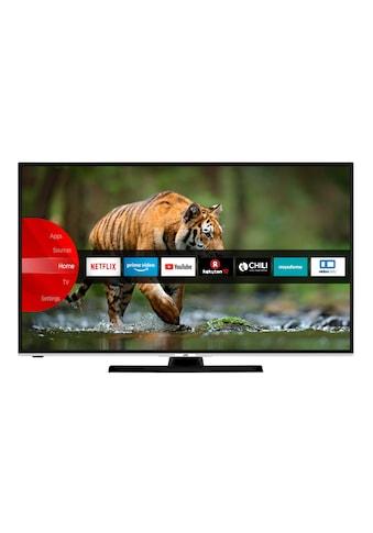 JVC LED - Fernseher (55 Zoll, 4K UHD, HDR, Smart TV) »LT - 55VU6955« kaufen