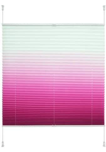 Plissee, »Farbverlauf«, Liedeco, Lichtschutz, ohne Bohren, verspannt kaufen