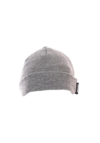 Dickies Fleecemütze »Herren Thinsulate - Mütze« kaufen