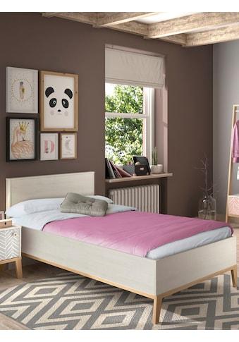 Gami Einzelbett »Alika« kaufen