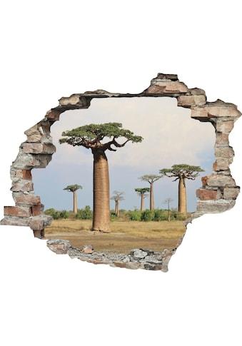 queence Wandtattoo »Affenbrotbaum« kaufen