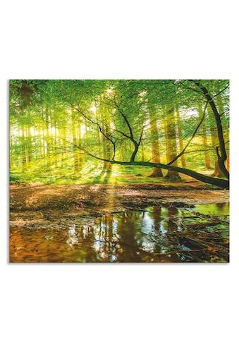 Artland Küchenrückwand »Wald mit Bach«, selbstklebend in vielen Größen - Spritzschutz... kaufen